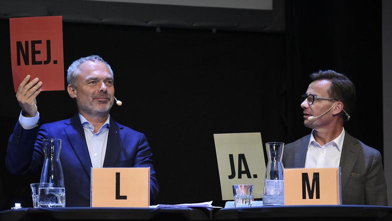 Skiljelinjer i svensk politik